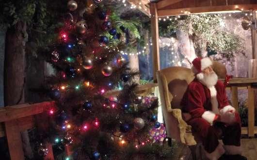 Cajun Christmas.Cajun Christmas At Big Branch Lacombe La 70445 December