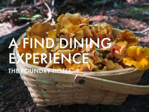 Chow Chow: A Find Dining Experience