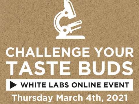 VIRTUAL: Challenge Your Taste Buds: Beer + Bites!