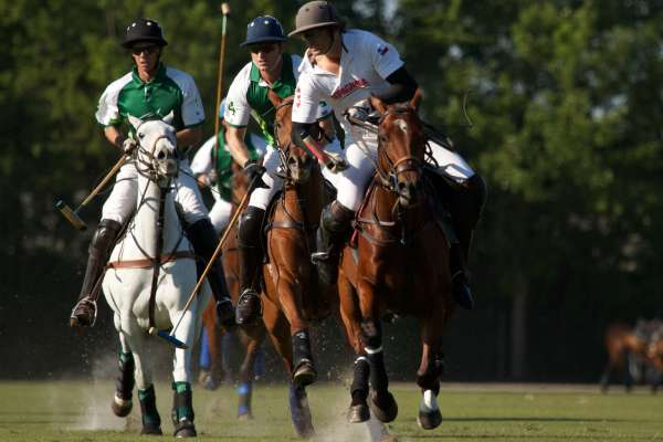 Houston Polo Club
