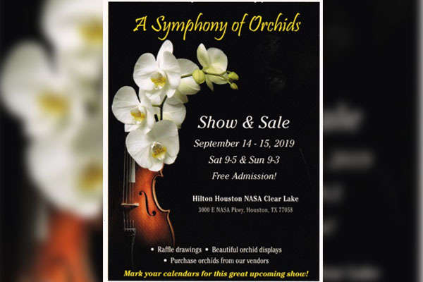 A Symphony of Orchids Show & Sale