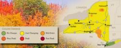 The first signs of near peak fall colors are expected in areas of the Adirondacks region this weekend, along with colors approaching or at midpoint of change in certain parts of the Catskills region, according to observers for Empire State Development's I LOVE NEW YORK program.