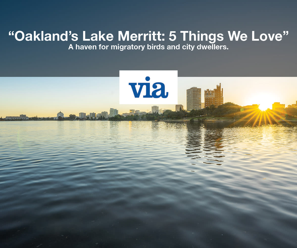 Via Lake Merritt Accolade