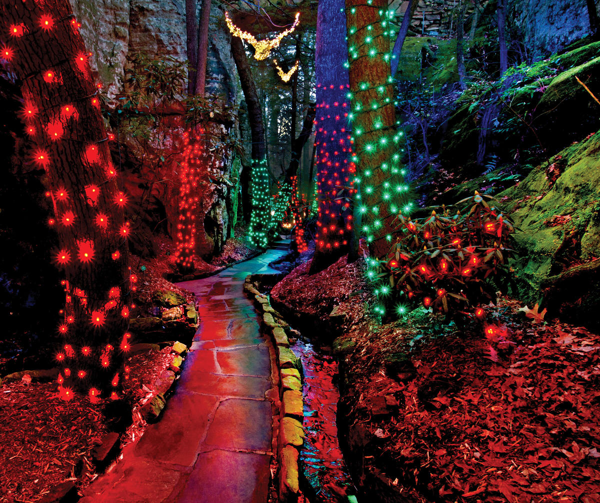 Hol_Rock City Enchanted Garden of Light