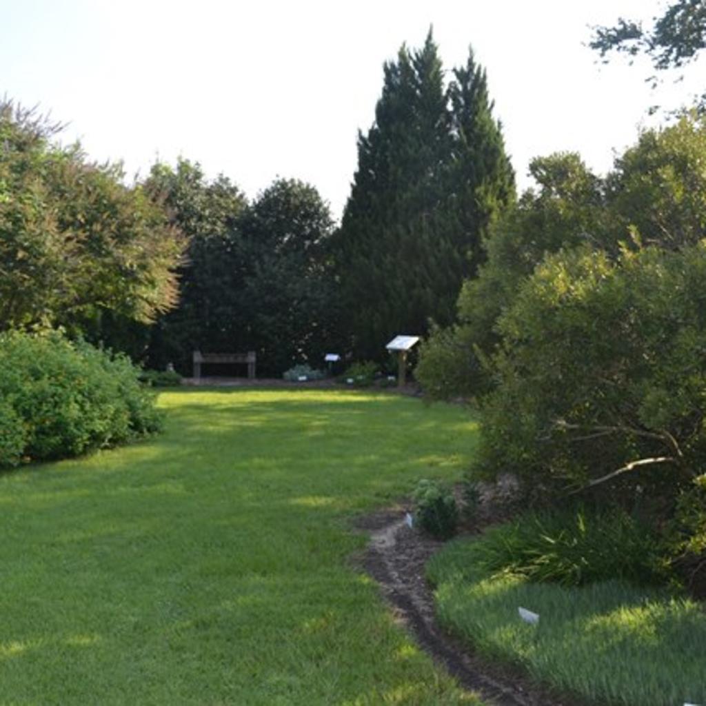 Arboretum-Web-Large.jpg