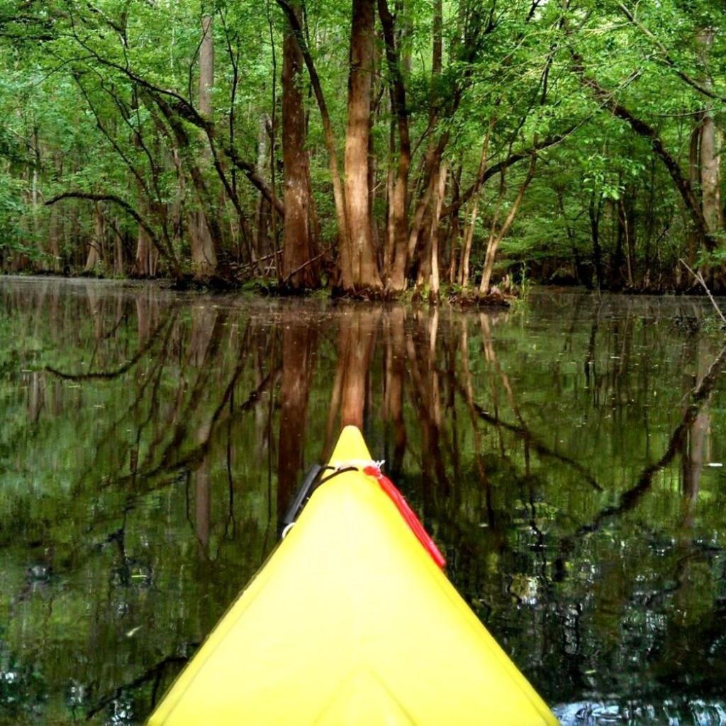 Knee-Deep-Adventure_Kayaking.jpg