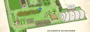 Groundwork Elizabeth MicroFarm