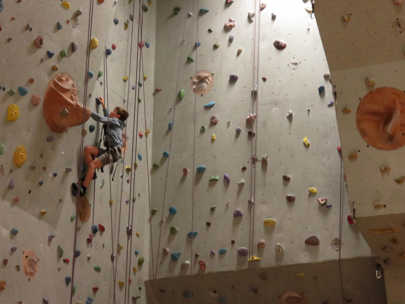 Rockatipu open day climbing wall
