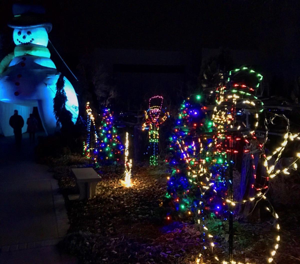 Budweiser Holiday Lights
