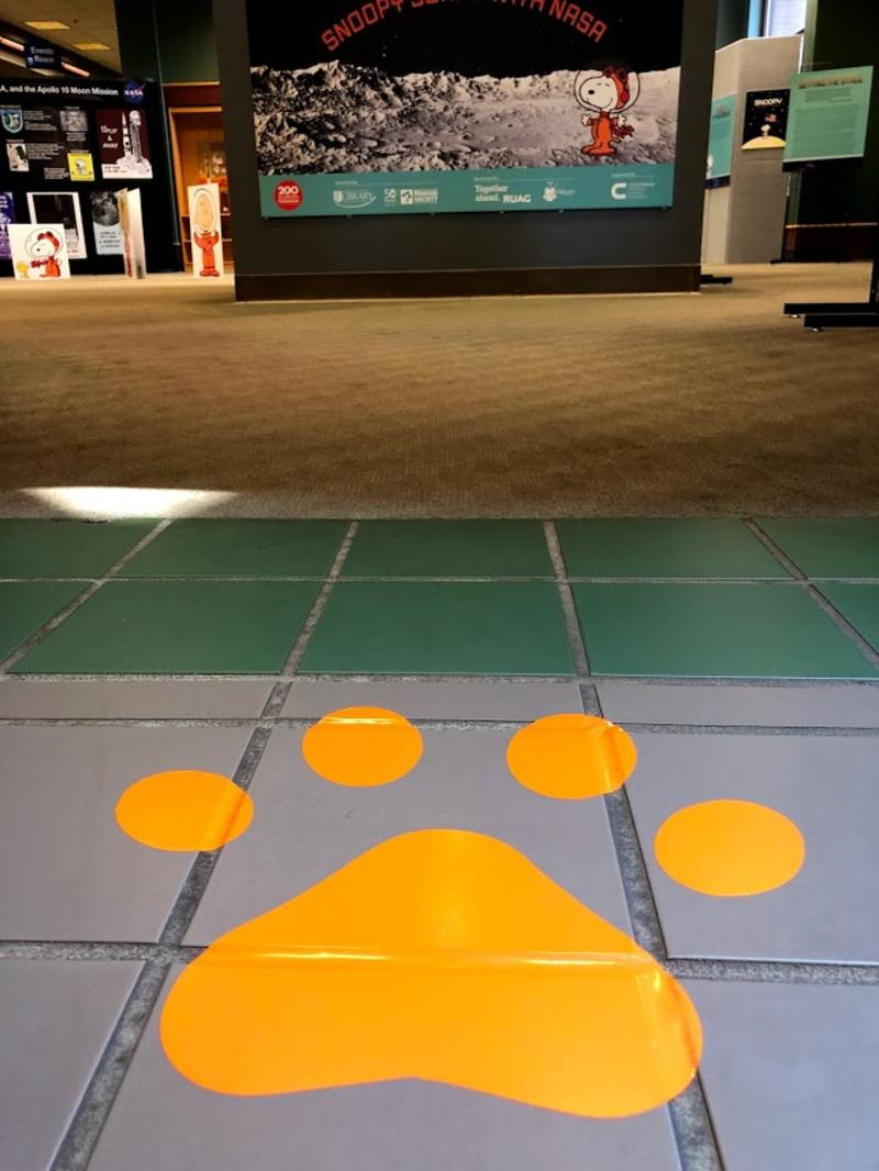 Paw print leading to exhibit