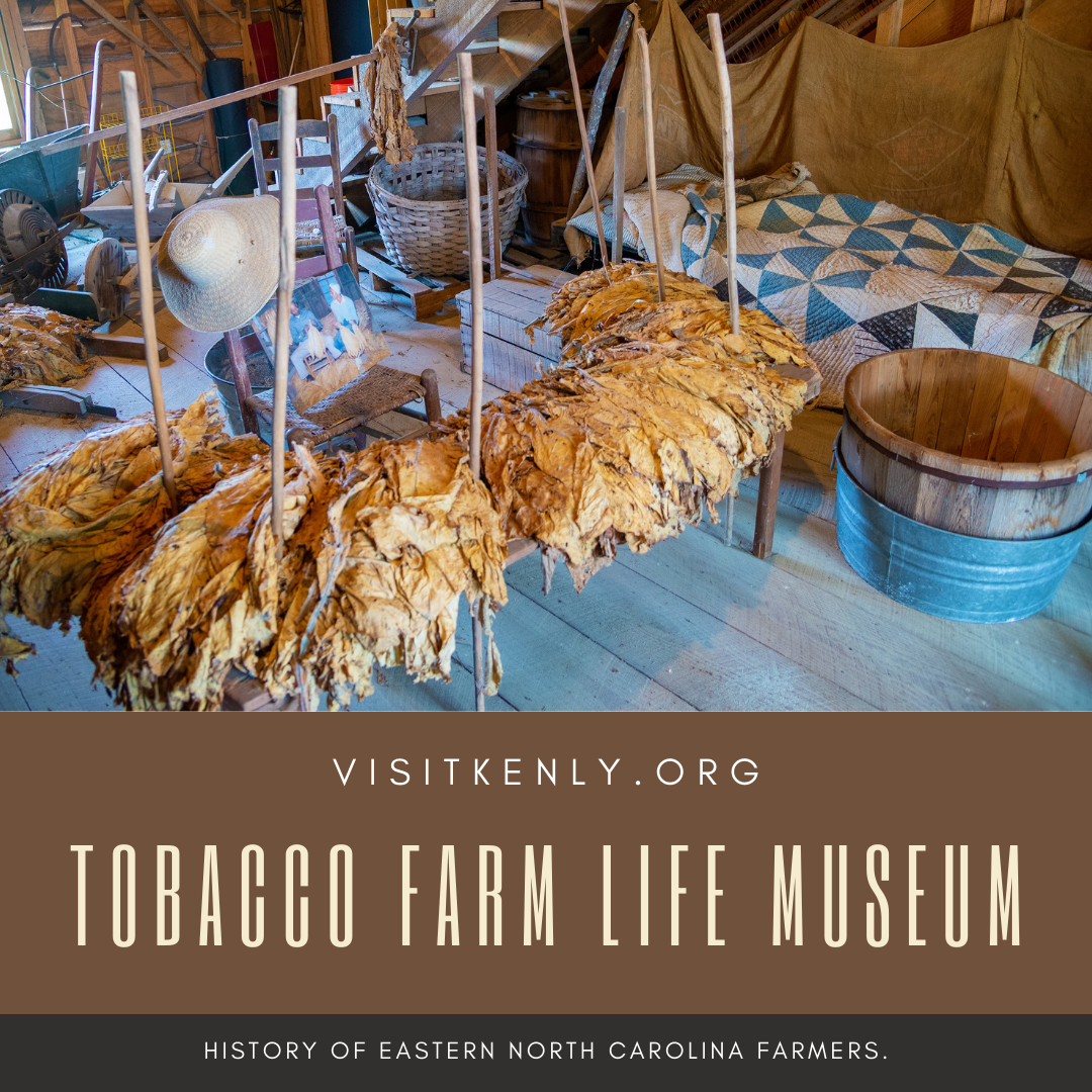 Tobacco Farm Life Museum is educational for kids and adults alike, visit them in Kenly, NC, for a history lesson on farming in NC.