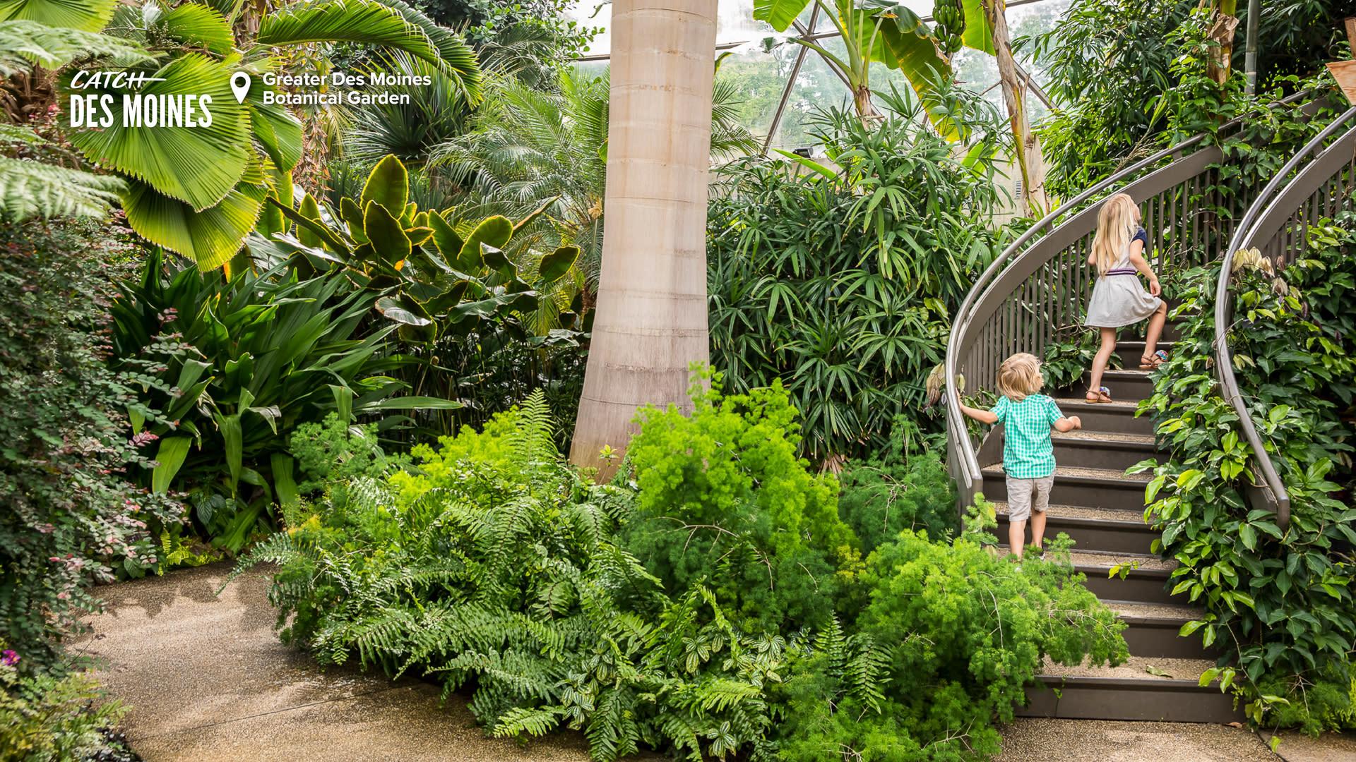 Greater Des Moines Botanical Garden Interior Zoom Background