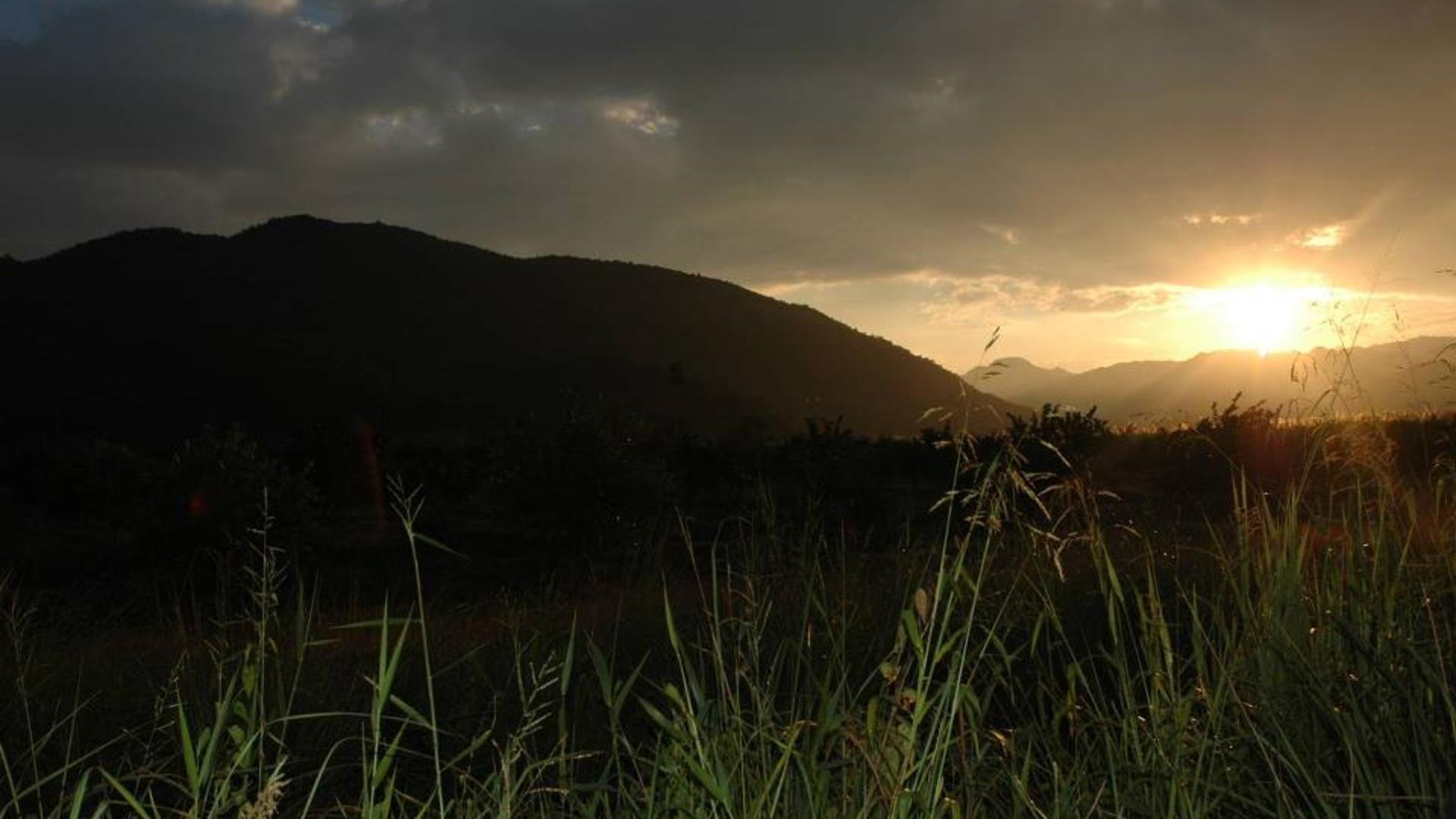 Forres Park Nature Reserve