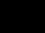 York Logo - Black - PNG
