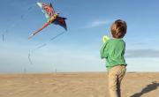 kite jockeys ridge