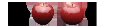 Rome Beauty & Idared Apples