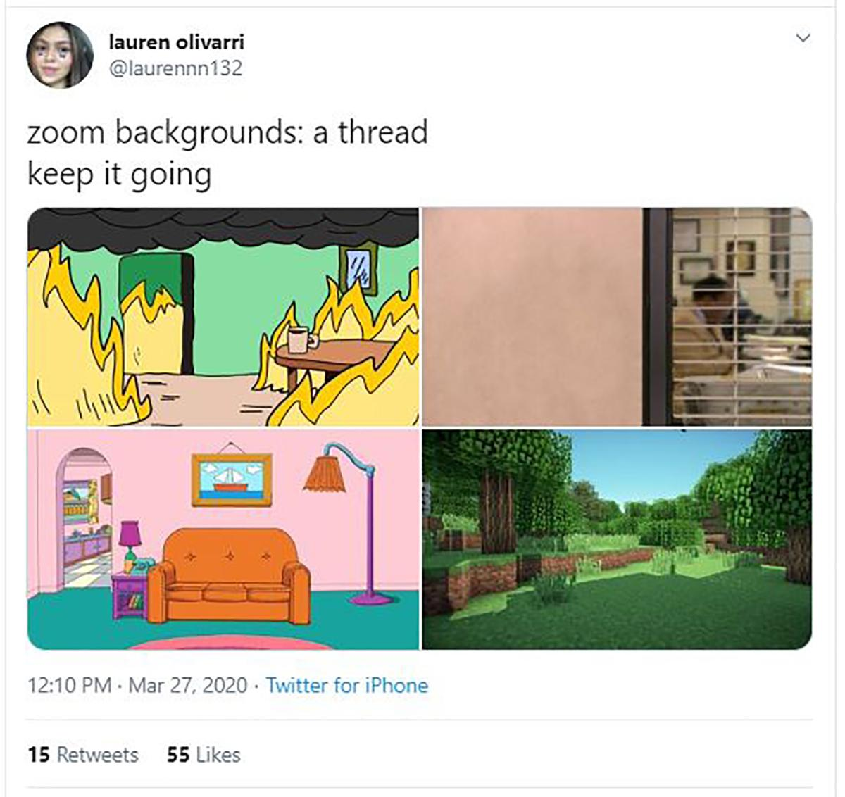 Zoom background examples