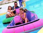 Seattle Southside Itinerary Family Fun Center Bumper Boats