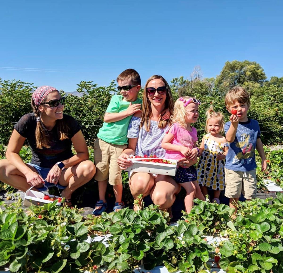 Garden Sweet Family