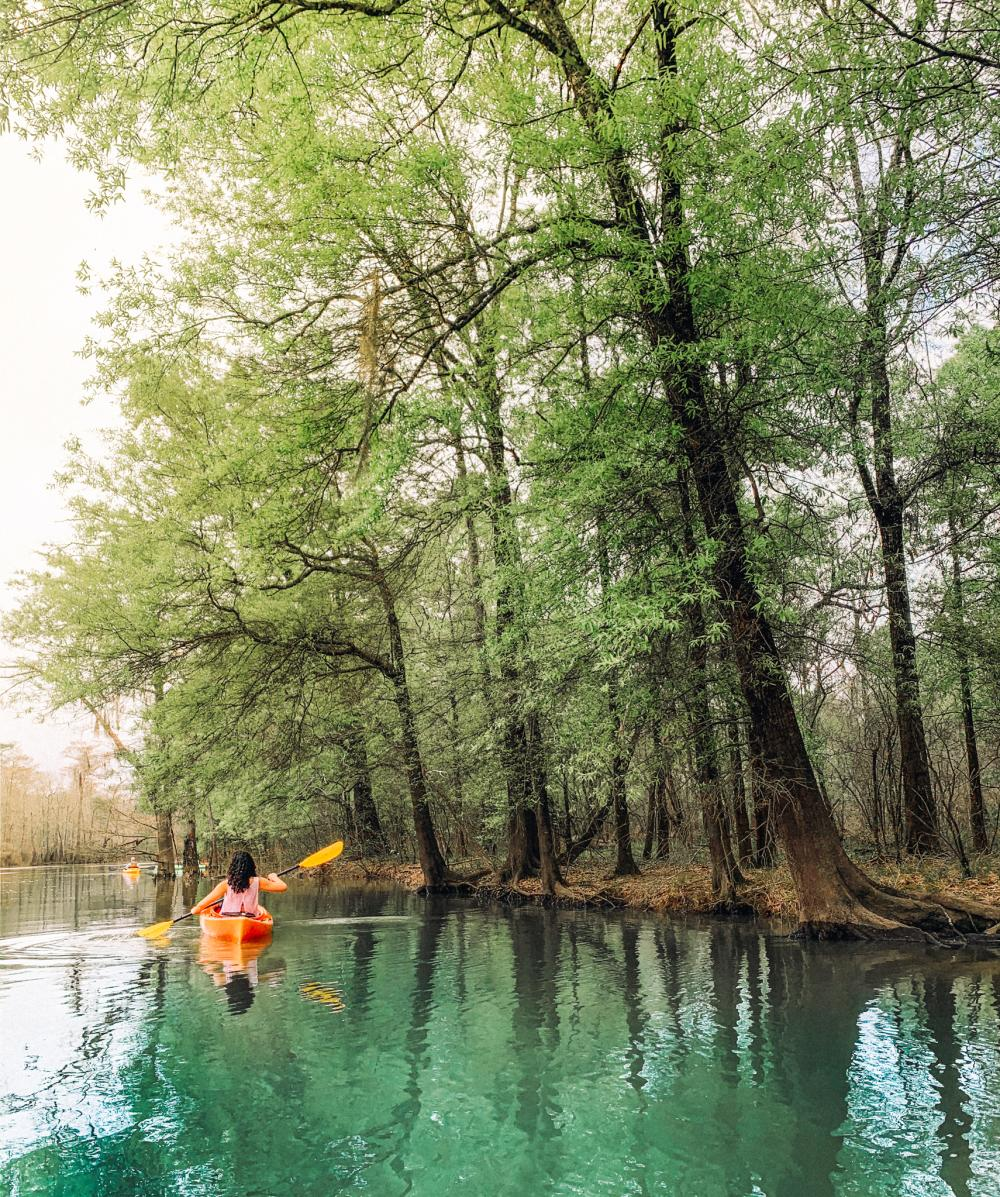 Kayak Big Thicket