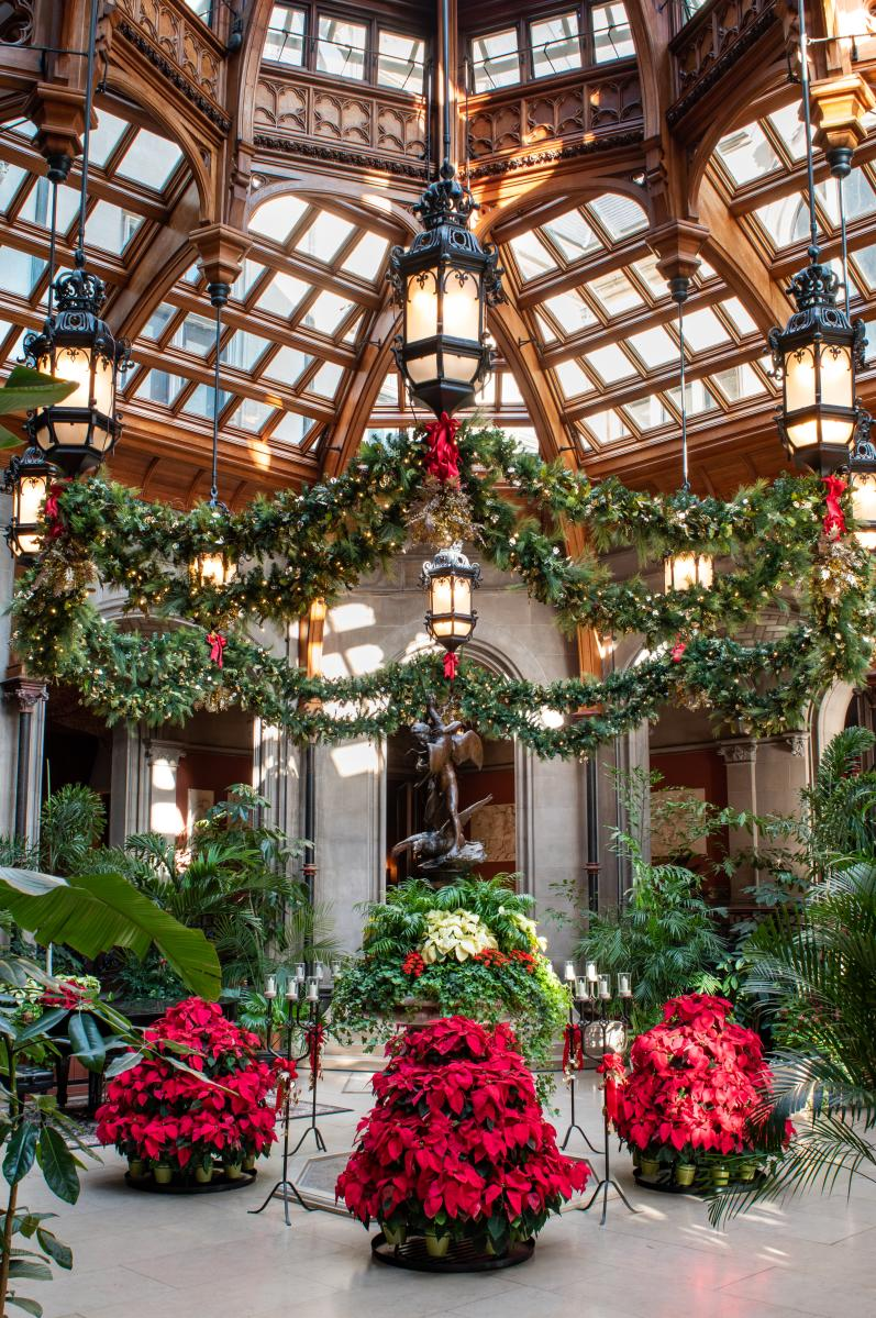 The Winter Garden features fresh poinsettias during Christmas at Biltmore