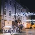 Horse Drawn Carriage Tour of Lights
