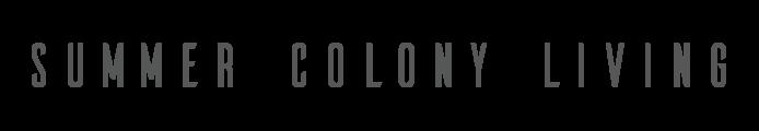 summer colony logo