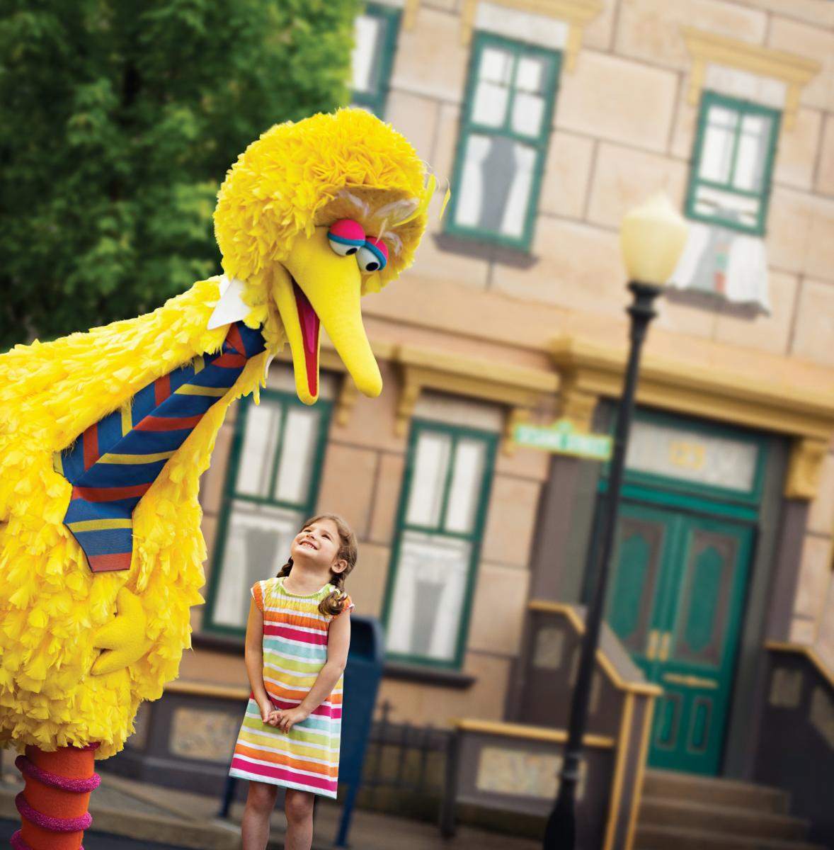 Big Bird at Sesame Place