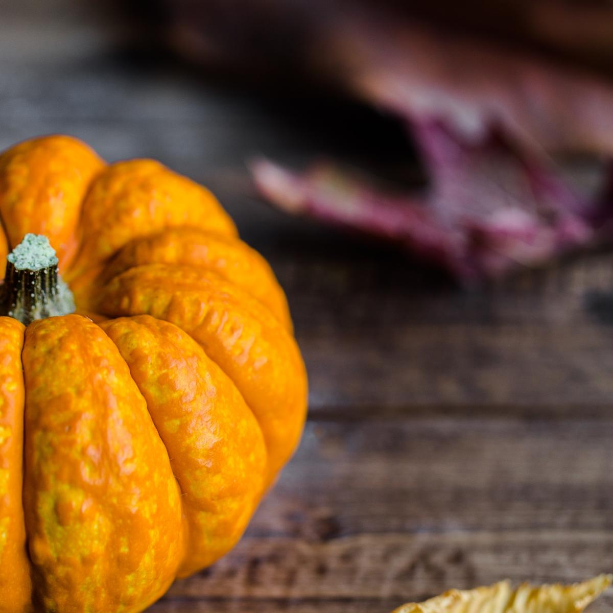 Thanksgiving Pumpkin - Stock Photo