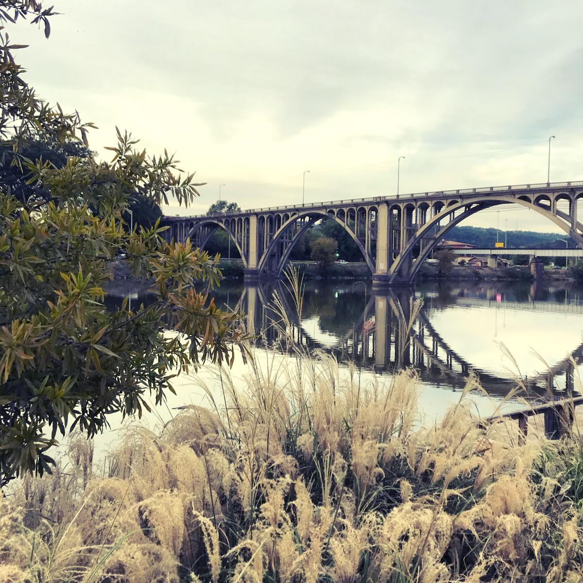 coosa river bridge gadsden