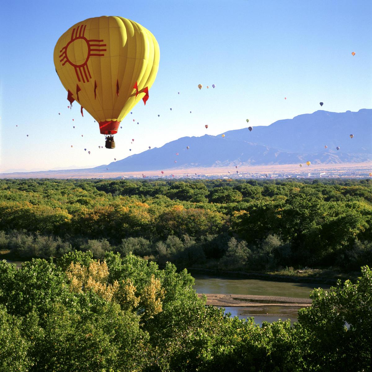 Large_Balloons0001 (1)