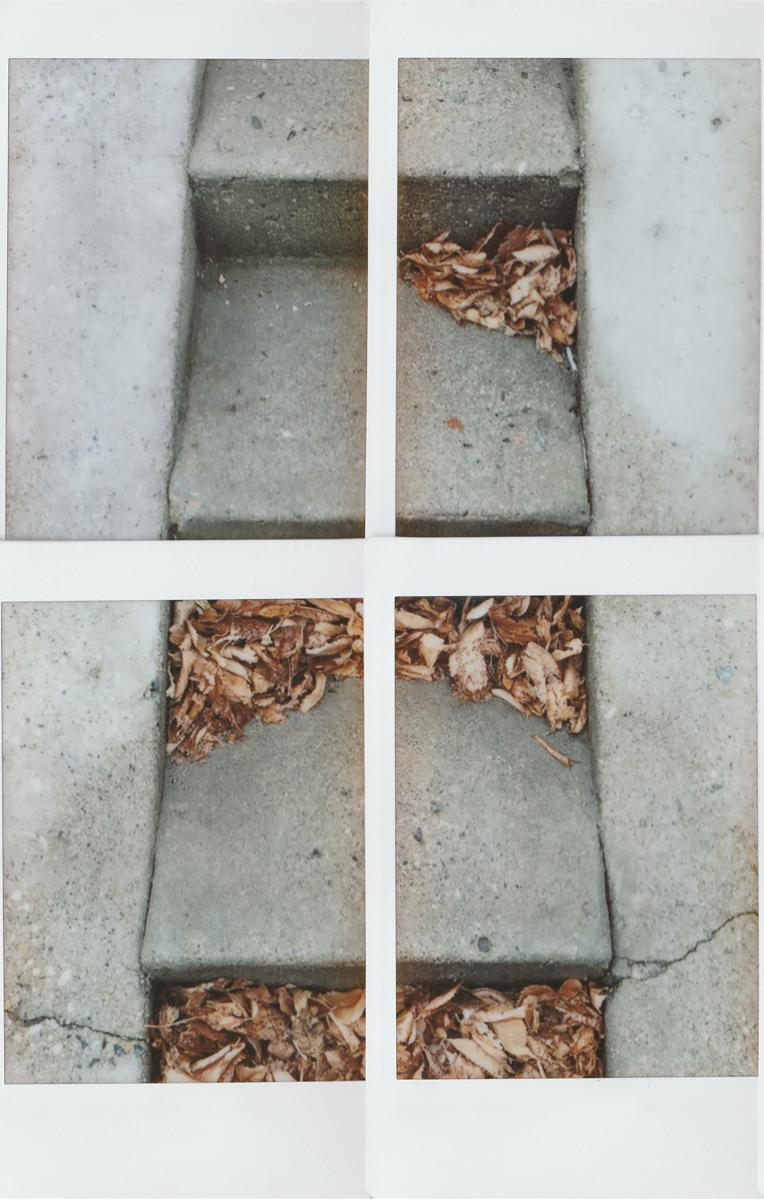 INSTANTaneous - Kyle Zurevinski - 2016