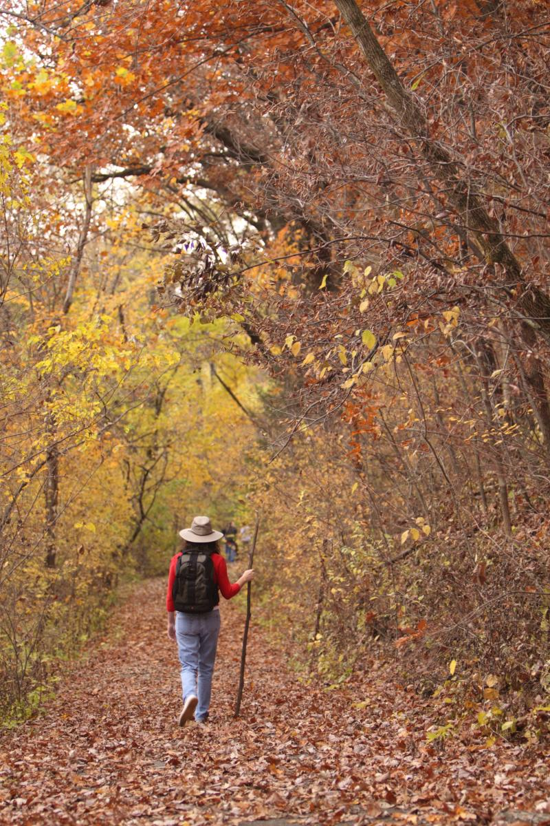 Hike State Park