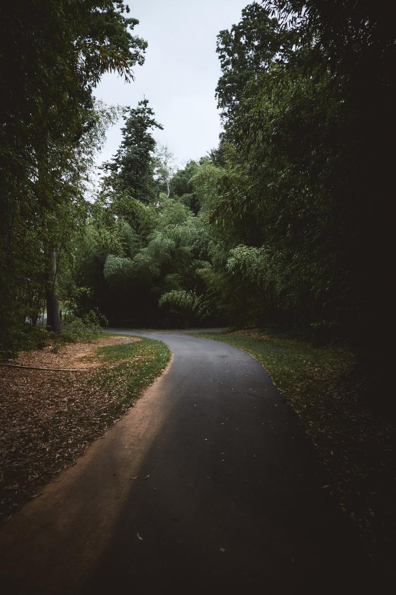 Robbins Park trail