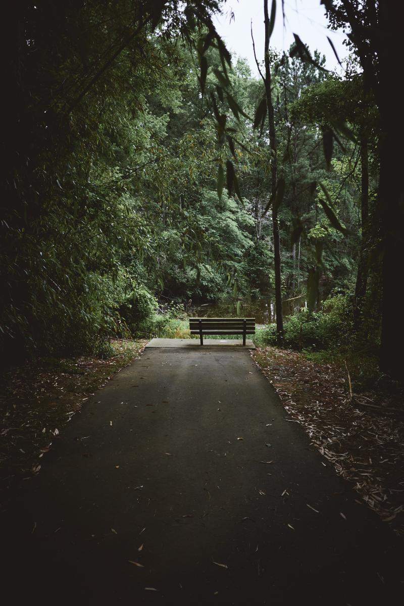 Robbins Park Bench