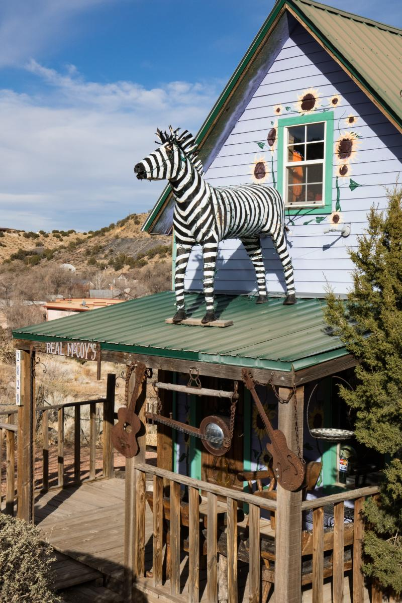 Madrid House with Zebra
