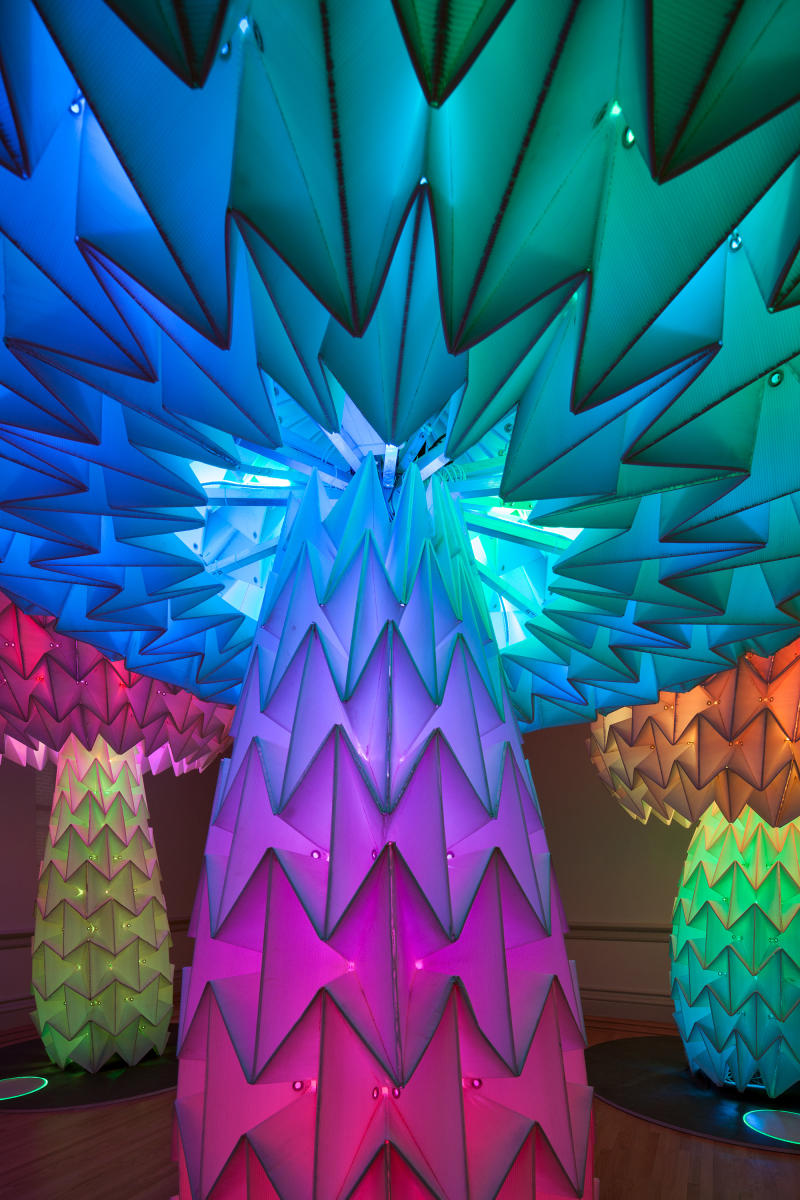 Elaborately folded paper mushrooms that are more than 12 feet high, illuminated with rainbow light, from Burning Man