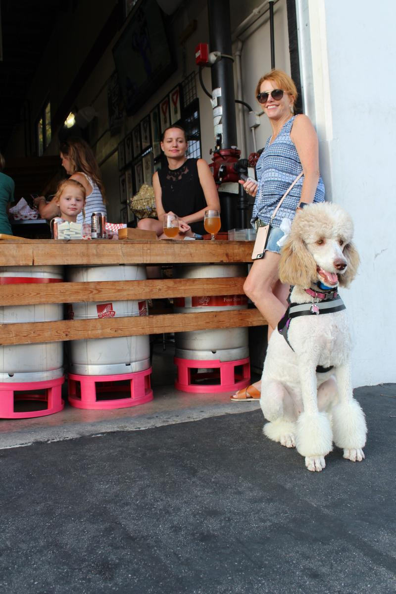 Dog Friendly Restaurants in Huntington Beach