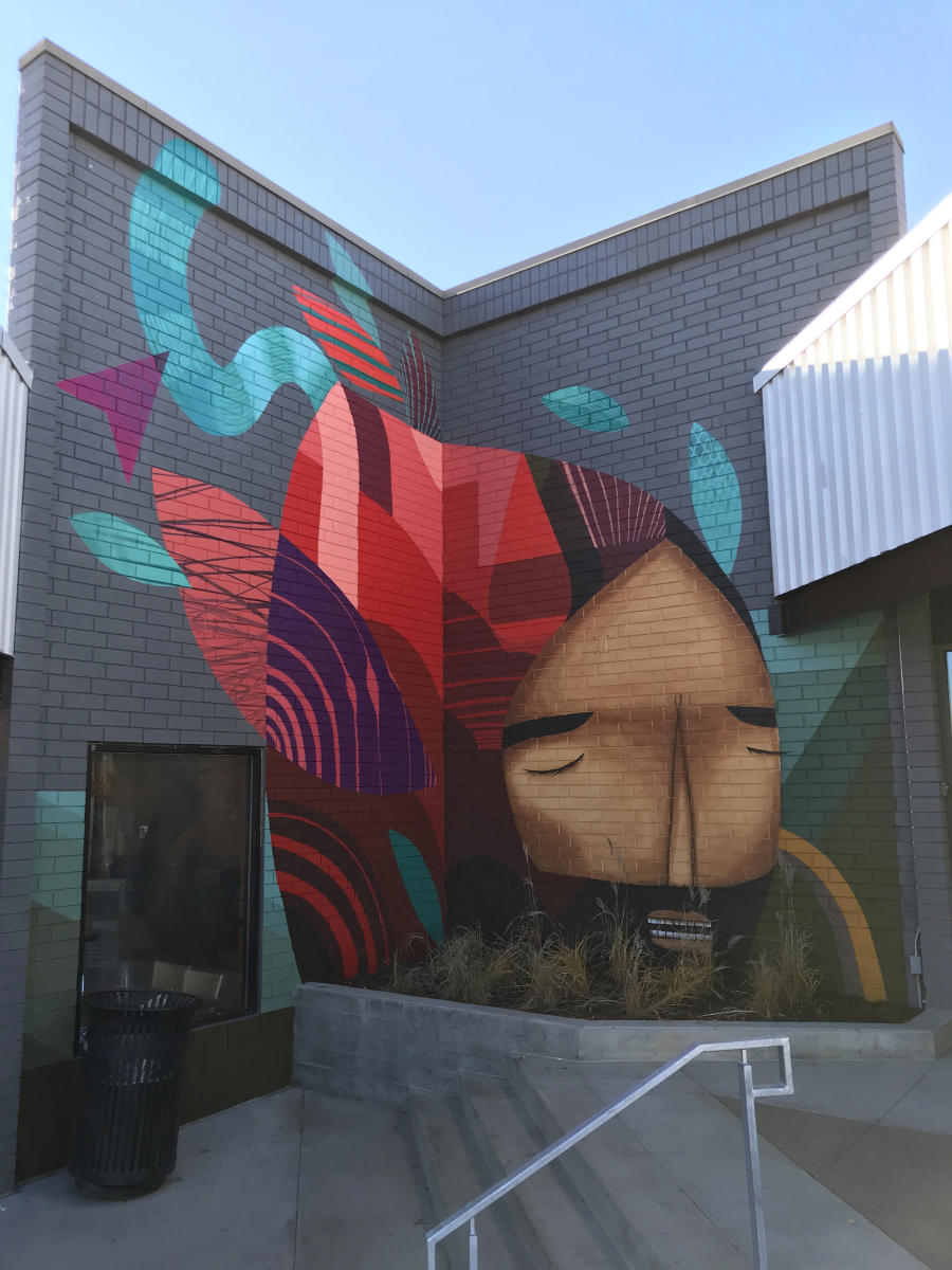 Denver street art by Jaime Molina and Pedro Barrios