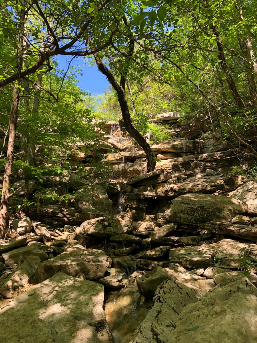 Monte Sano Buzzard's Roost Trail