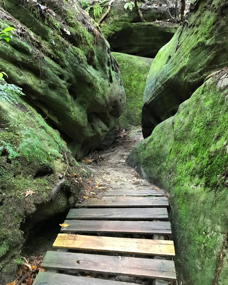 Carley's Adventures: Dismals Canyon
