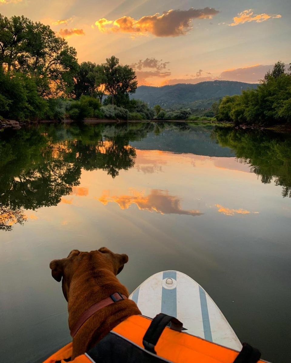 SUP on the Animas River