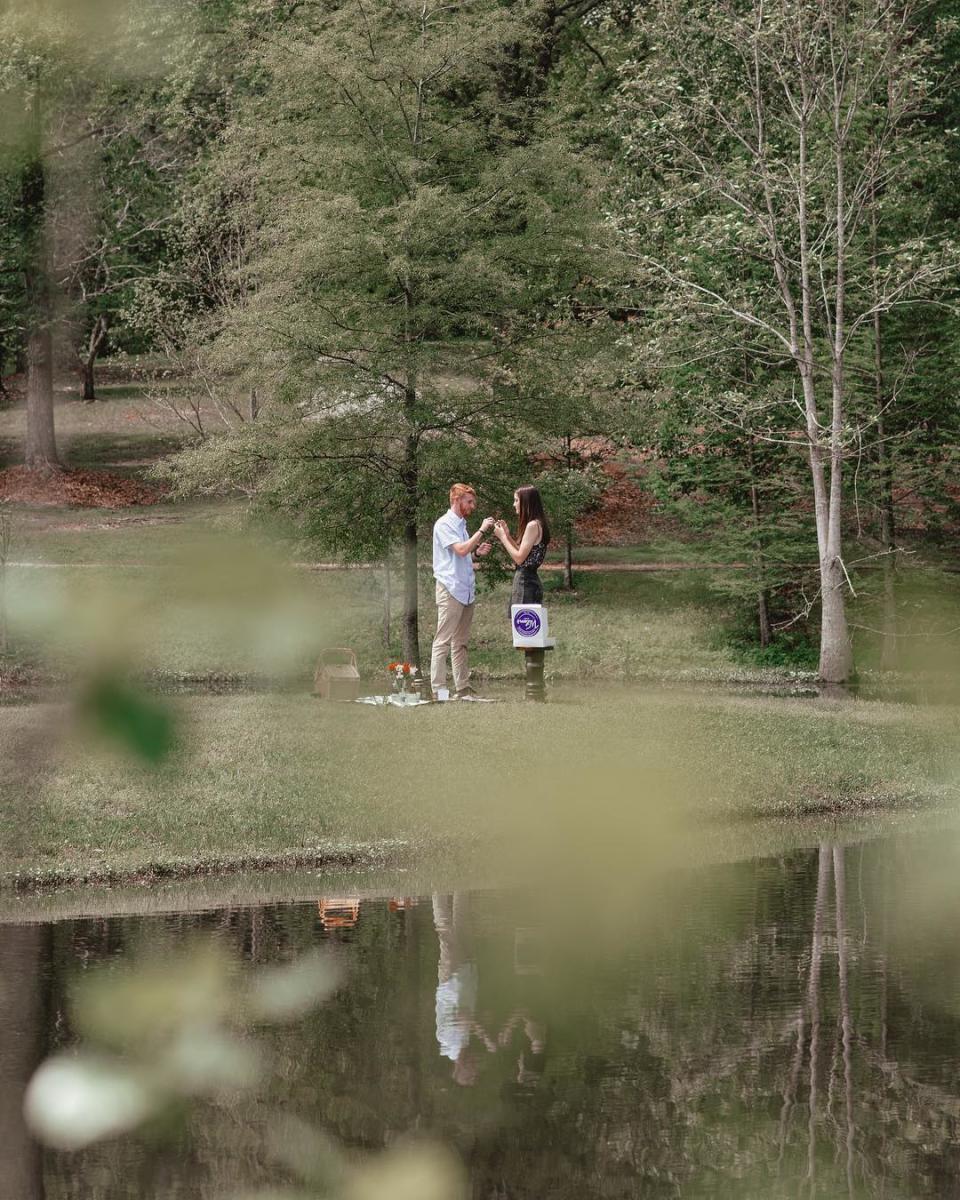 Engagement at Lockerly Arboretum