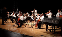 FG Bulber Youth Orchestra