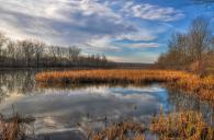 """""""Vischer Ferry - Nature of the Old Erie"""" by Karl Barth"""