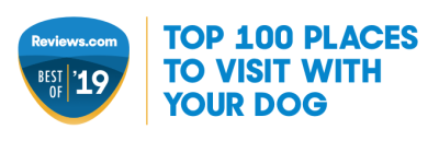Top Place to Visit with your dog