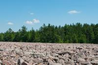 Boulder Field at Hickory Run State Park in the Pocono Mountains