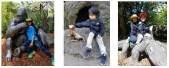 Zoo Photo Ops