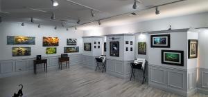 David Sussman Gallery at Sandman Book Company