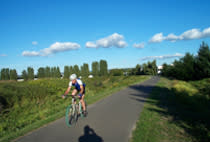 cyclist on bike path in the summer